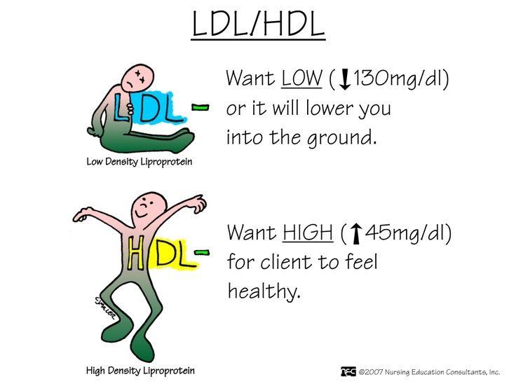 Nursing Mnemonics: LDL/HDL