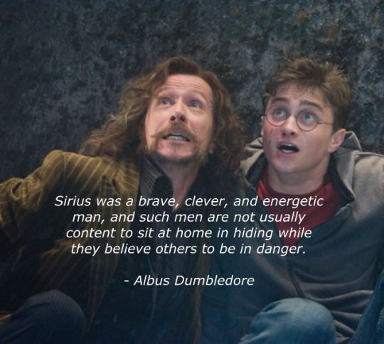 20 years ago, June 18th Sirius Black died protecting the ones he loved. R.I.P. Sirius Black