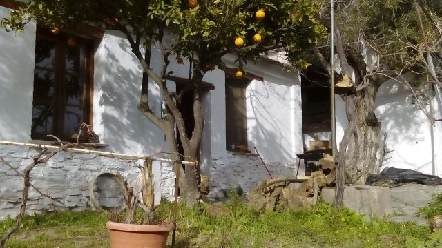 """85000,00€ · Casa de campo en cortijo con tierra alpujarra granada · ENGLISH ESPAÑOL FRANÇAIS DEUSTCH  Rustic House with land ( """"Cortijo"""") in the heart of beautiful Alpujarra (Grenade), oriented to the south, mains electricity, mains water, abundant water of irrigation, road access by car. The house has  93 m2 built. It has a kitchen and bathroom, a small bedroom and a large living room. There are several warehouses and a porche-tinado that can be reformed to make rooms. The farm has more…"""