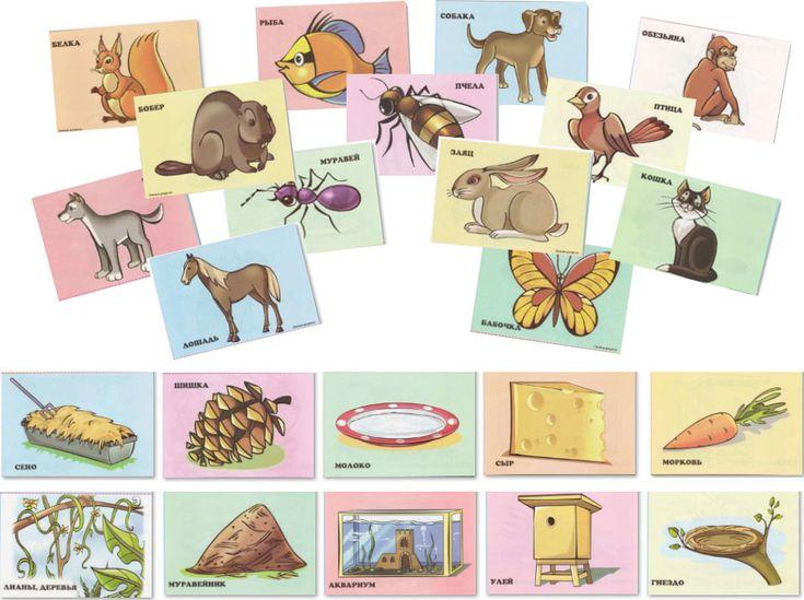 Картинки с животными. Кто где живет и что ест? | Обучалка