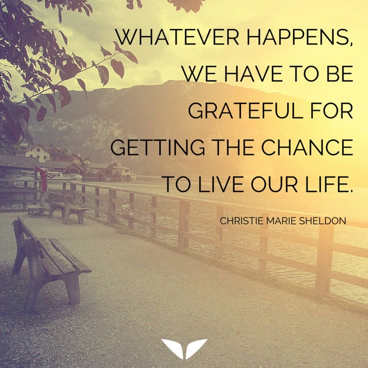 Whatever happens, we have to be grateful for getting the chance to live our life http://www.finerminds.com/love-relationships/3-things-need-know-about-love-have-more?utm_content=buffer4fde5&utm_medium=social&utm_source=pinterest.com&utm_campaign=buffer