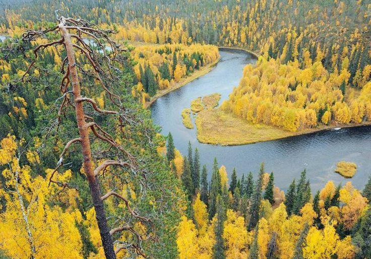 Oulanka National Park, Finland