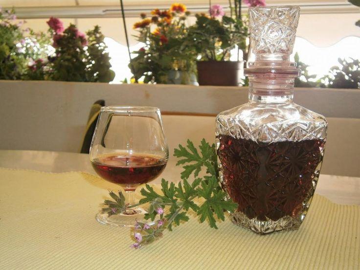 Η αρμπαρόριζα (Πελαργόρνιο το βαρύοσμο ή Pelargonium graveolens, όπως είναι η επιστημονική του ονομασία), γνωστό και με...