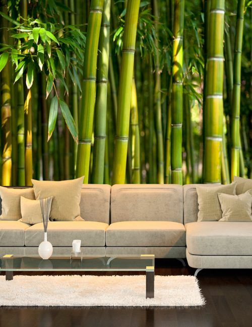 Carta da Parati Foresta di Bambù Carta da Parati Fotomurale Tema Paesaggi