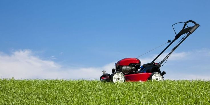 Fox Mowing NSW provides a friendly, proficient and prompt lawn mowing and garden maintenance service at reasonable prices.