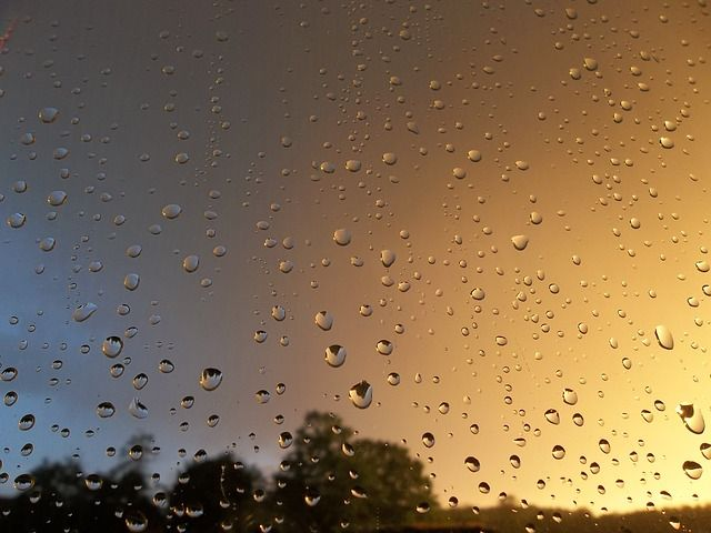 Rain, After The Rain, Drops, Nature, Las, Clouds
