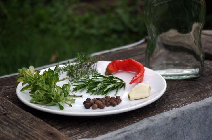 NÁVOD: Olej ze středomoří -  ( DIY, Hobby, Crafts, Homemade, Garden, Creative, Ideas)