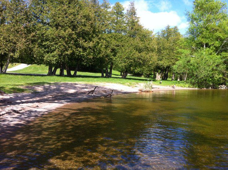 Verulam Park - Sturgeon Lake - Summer
