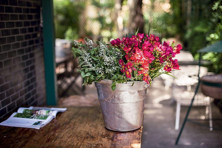 Este arranjo não poderia ser mais simples: num balde de alumínio, as espécies em tonalidades vivas ocupam metade do recipiente – do outro lado, ficam as folhas. No balde de alumínio, ramos de frésia vermelha compõem o arranjo de inspiração caipira.