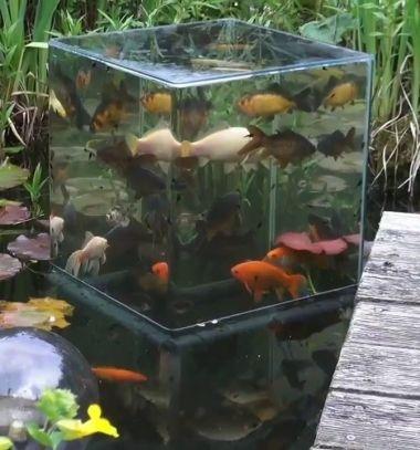 How to build a fish tower ( DIY observation tower) for fish pond  // Haltorony készítése házilag halastóhoz egyszerűen - videó // Mindy - craft tutorial collection