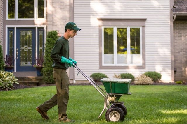 Davey Tree Best Time To Fertilize Lawn In Fall Month And Time