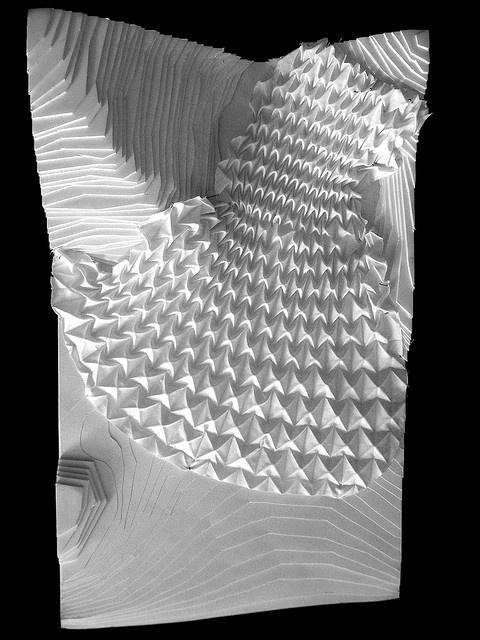 jorge ayala/ surface proliferation