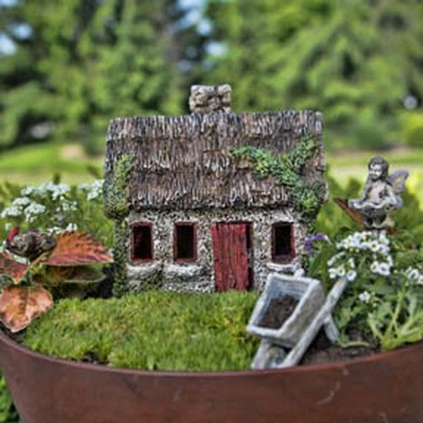 17 best images about gardening on pinterest gardens for Irish fairy garden
