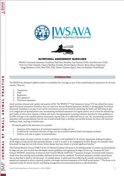 ISFM and WSAVA working together   international cat care