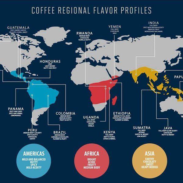 Procedencia geográfica del café: características.