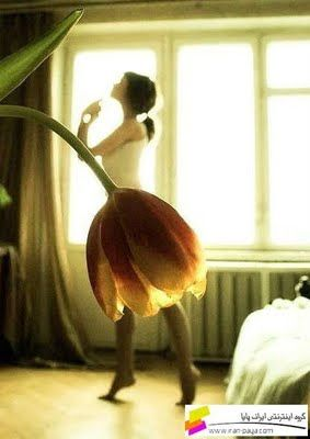 This picture is really neat, I like the illusion of the tulip skirt that is created. Maybe for dance page or we could do something similar with a different object.