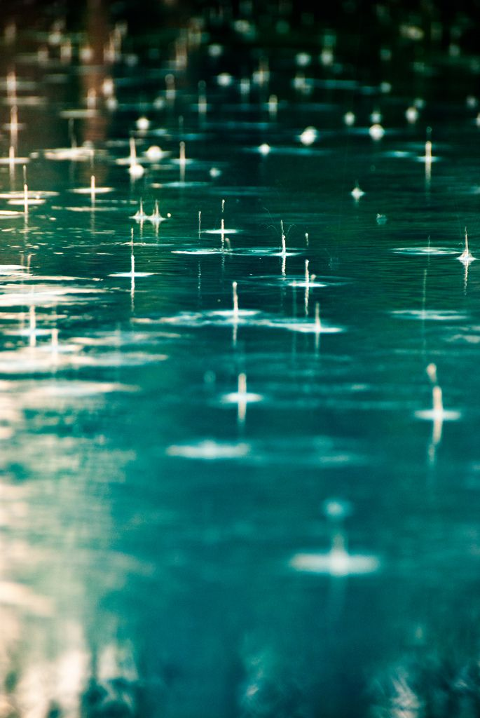 Rain cleanses the soul. It is a welcome visitor, forcing time for reflection and rest.