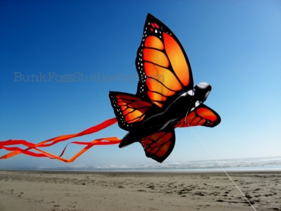 Monarch Butterfly kite - fly a few on short strings at a theme event or party.