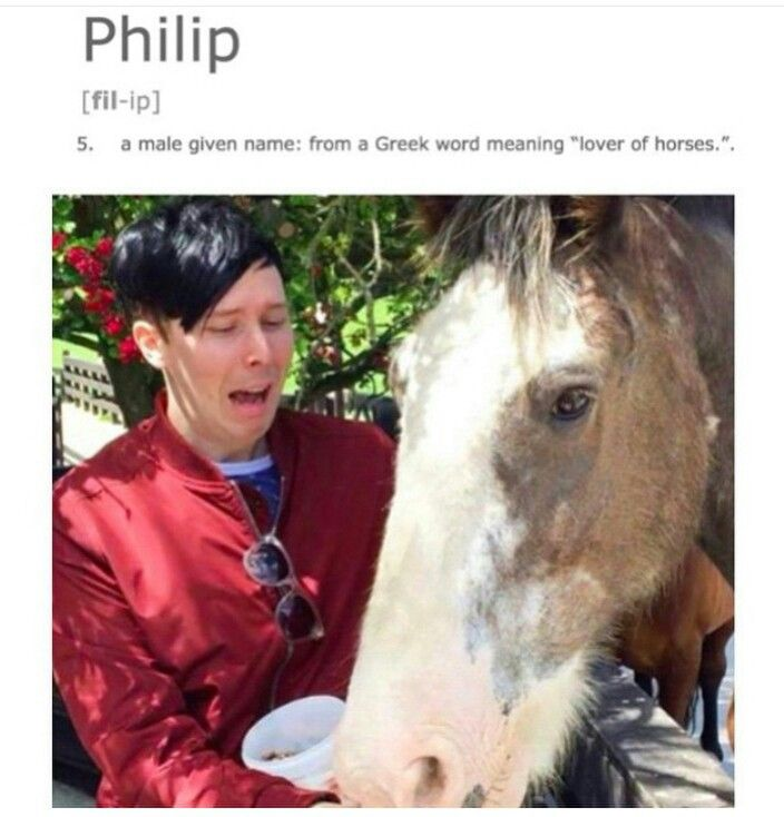 I laughed more than i should have cause Phil was a child he was afraid of horses.