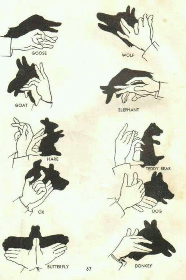 De kunst van schaduw figuurtjes