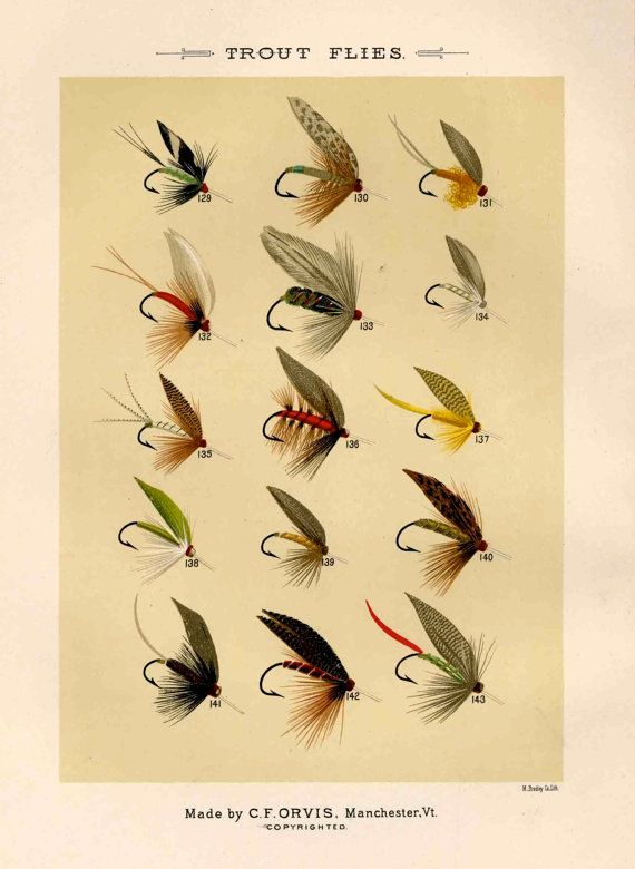 trout flies glorious fly fishing print no 1 by EPHEMERApress
