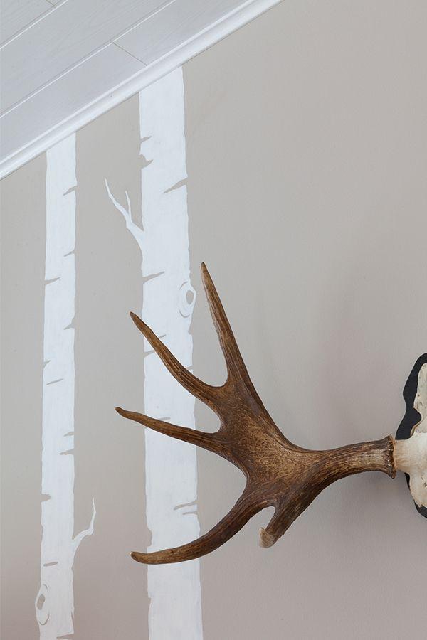 Skandinaavista seinää koristaa koivun rungot ja sarvet. Seinä maalattu…