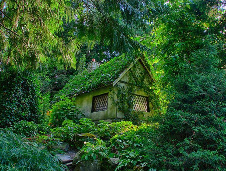 No Canadá, esta cabana tem um estilo mais clássico e é repleta de trepadeiras, assim como outras espécies verdes que emolduram a construção. Fadas ou trolls gostariam de morar aqui.