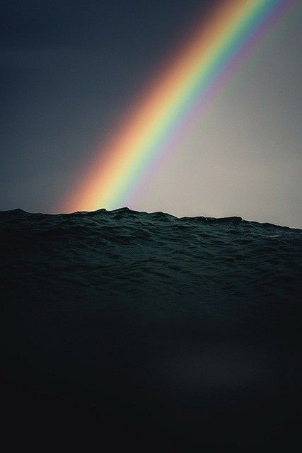 Image result for every raindrop a valley full of rainbows evanescence