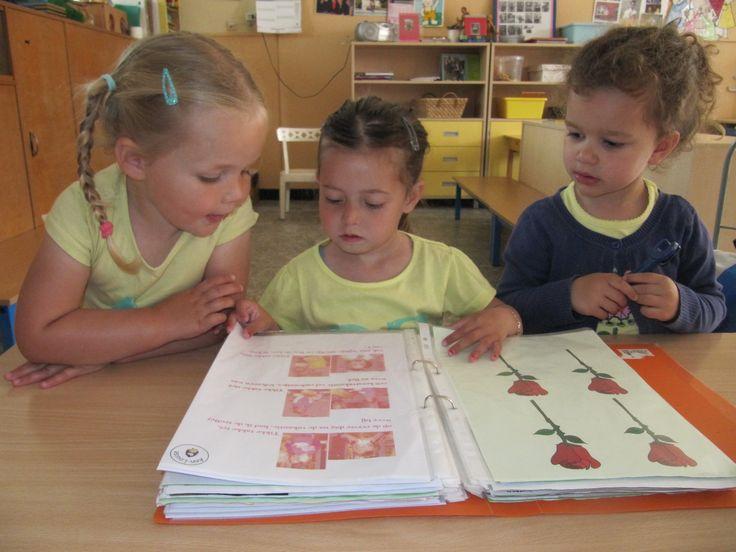 Lezen wat de mama's en papa's in  het 'kindje van de doos' dagboek geschreven, geplakt hebben...