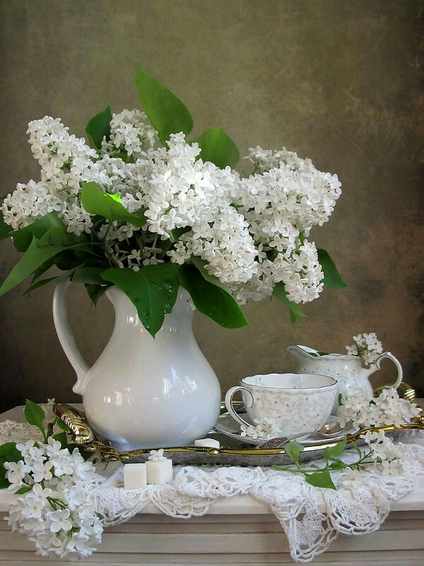 White Lilacs in a white jug
