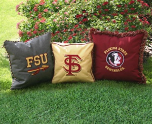FSU Pillows... could probably make some with all my t-shirts!