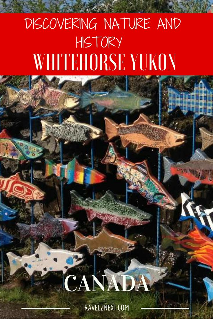 Whitehorse is the capital of the Yukon in Canada and a city of nature and history.