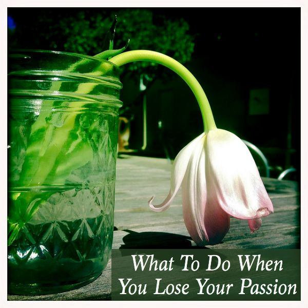 What To Do When You Lose Your Passion - I recently lost my passion and I'm sharing a few tips.
