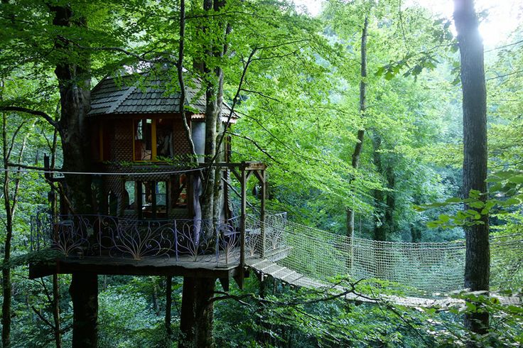 168 best images about tree houses on pinterest trees a tree and the treehouse. Black Bedroom Furniture Sets. Home Design Ideas