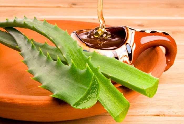 Αλόη: Ένα φαρμακείο σε γλάστρα! η αλόη χρησιμοποιείται ως καταπραϋντικό σε διάφορους ερεθισμούς του δέρματος, όπως εγκαύματα, κάλους, ουλές, έρπη.