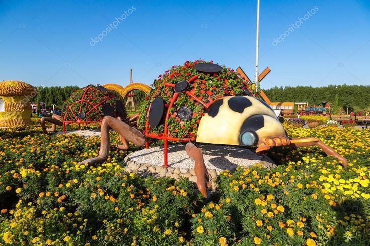 Dubai miracle garden Stock Photo , spon, miracle,