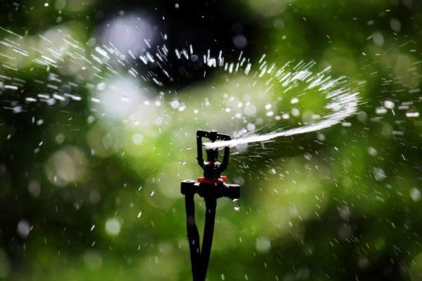 Há no mercado diversos sistemas de irrigação, entre tipos de equipamentos e empresas especializadas. No entanto os mais utilizados são o de aspersão e o de gotejamento. Saiba mais a seguir. Como Funciona a Irrigação por...