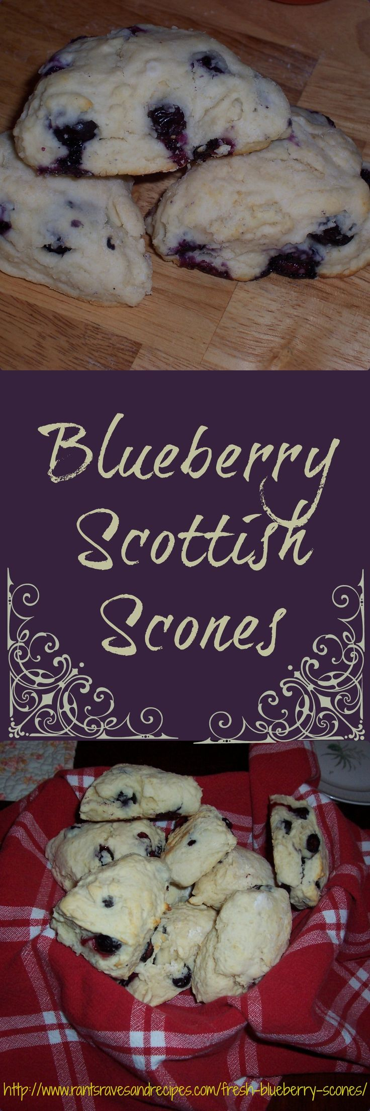 Fresh Blueberry Scottish Scones, a summer treat that can't be beat!