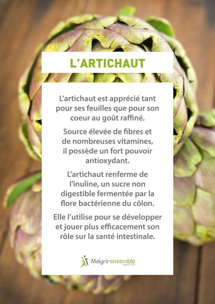 Fruits et Légumes - L'Artichaut// Bienfaits Alimentation saine et équilibrée