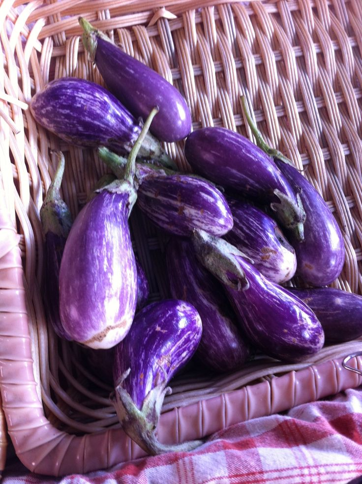 """""""fairy"""" eggplants at the New Amsterdam Market, NYC Sept 2013"""