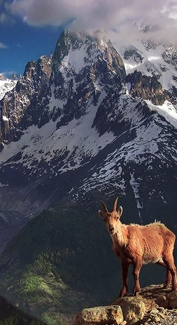 Shot taken above Chamonix in the Mont-Blanc, FRANCE area.