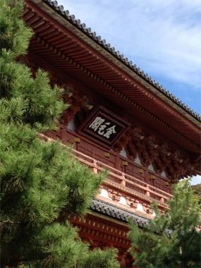 <茶道>一生の勉強として始めた茶道のお稽古。お教室の研修旅行では千利休ゆかりの寺、京都・大徳寺へ。利休が秀吉に切腹を命じられるきっかけとなった三門(金毛閣)を特別に見学し、茶の湯の歴史に親しみました。【25ans編集長 十河ひろ美】 lexus.jp/... ※掲載写真の権利及び管理責任は各編集部にあります。LEXUS pinterestに投稿されたコメントは、LEXUSの基準により取り下げる場合があります。
