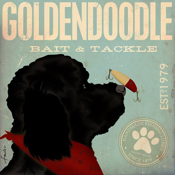 goldendoodle bait and tackle - Google Search