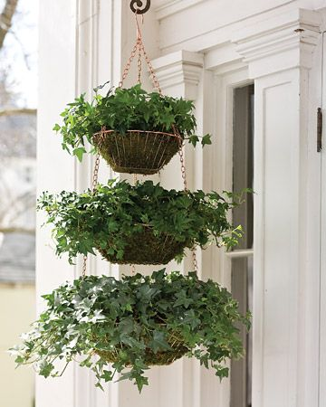 Create a verdant planter for your front porch using a trio of hanging wire baskets, sheet moss, and two containers of ivy.    How to Make the Hanging Wire Baskets Planters