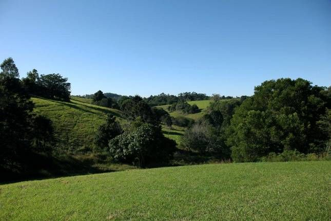Montville, maleny, mapleton accommodation places to stay & things to check out
