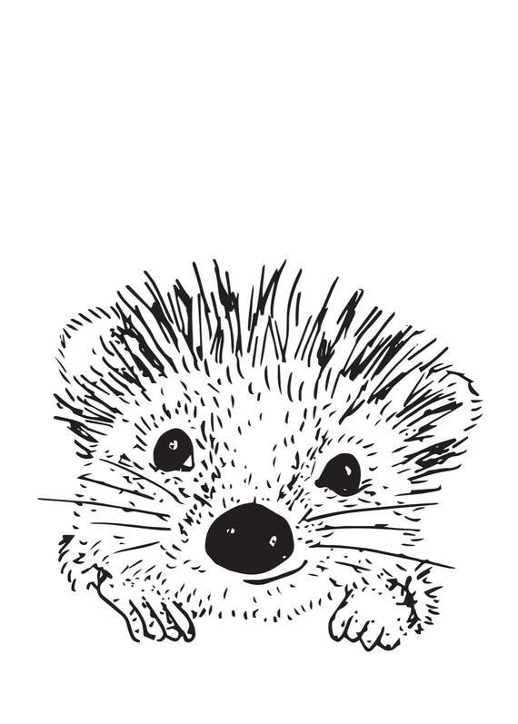 Wall Artwork Pip The Hedgehog Hedgehog Drawing Hedgehog Illustration Mermaid Drawings