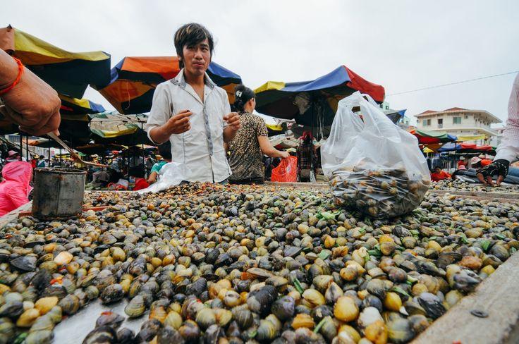 Des coquilles au marché de Stung Treng, Cambodge