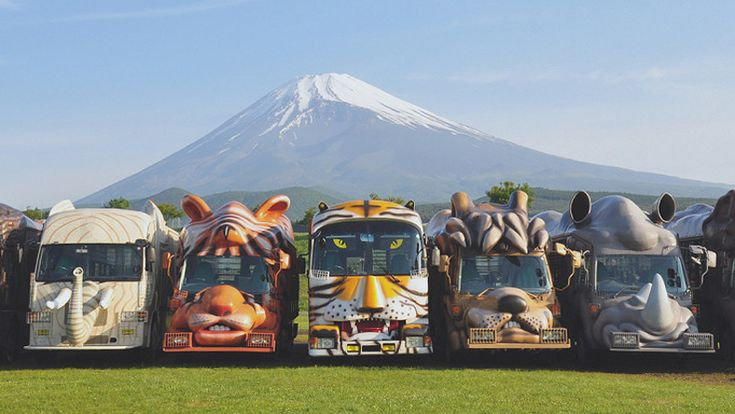 Fuji Safari Park - DONE