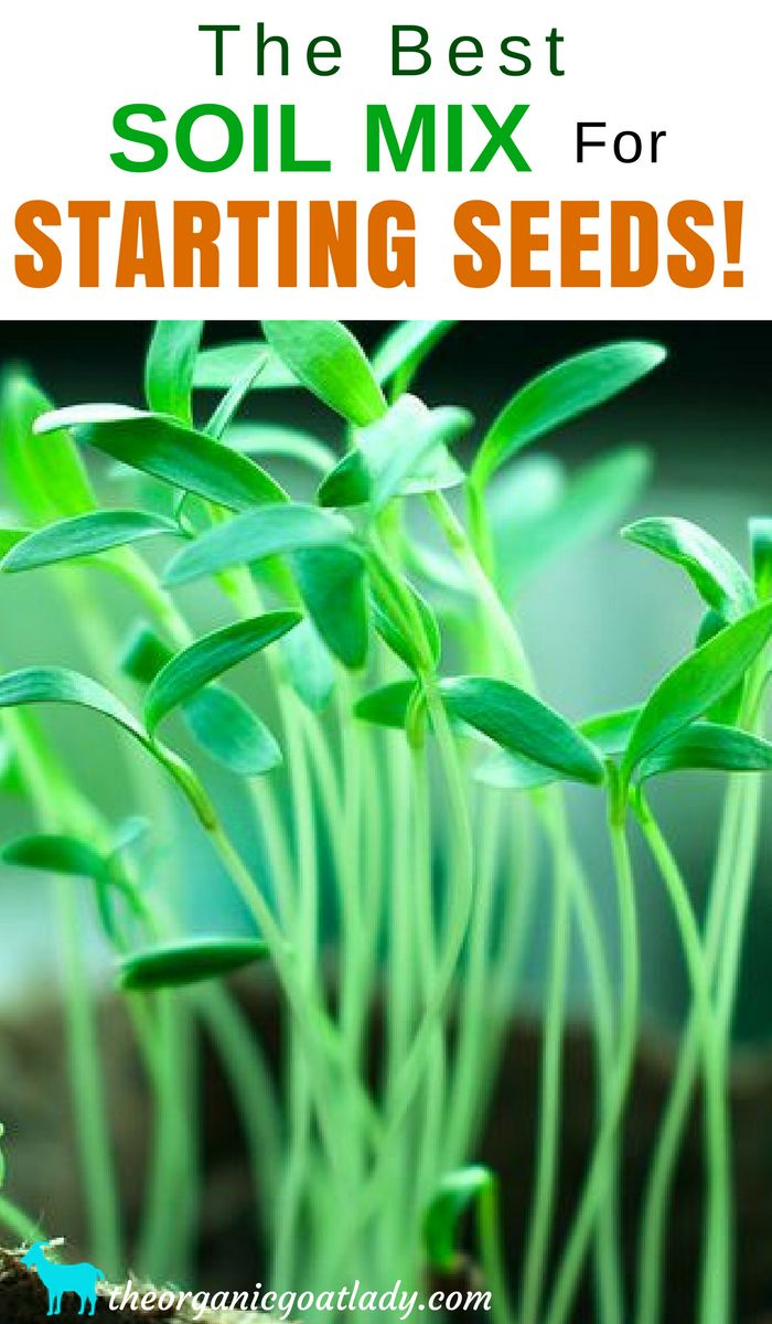 Garden Soil, The Best Soil Mix For Starting Seeds, Seed Starting Soil, Organic Seed Starting Mix, Gardening Tips, Gardening DIY