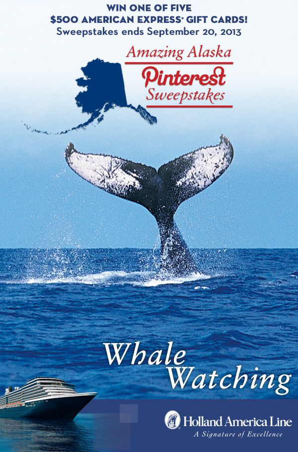 If Whale Watching is your favorite Alaska shore excursion, enter the @Holland America Line Amazing Alaska Pinterest #Sweepstakes for your chance to #win one of five 500.00 American Express gift cards. Enter now: https://www.facebook.com/HALCruises/app_363845683737502?ref=ts #Alaska